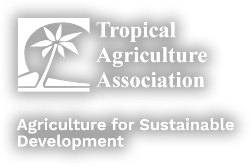 Tropical Agriculture Association Logo